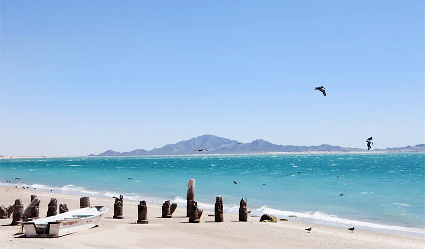 Plan your trip to Bahía de Kino
